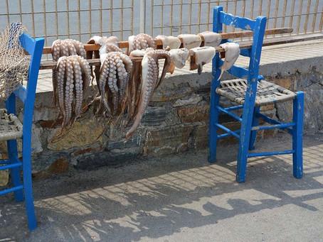 Healthy Octopus