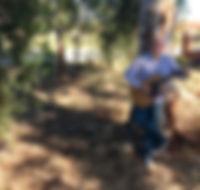 Clay promo tree.jpg
