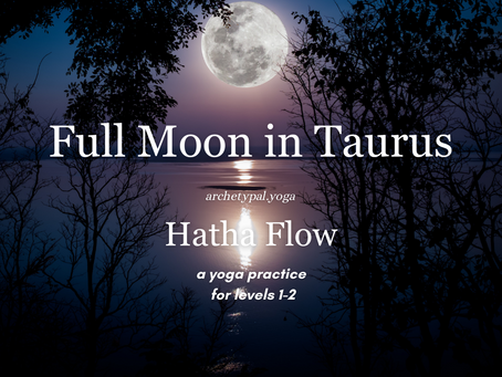 Full Moon Hatha Flow - November 1, 2020
