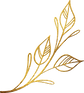 gold_0005_nature-16_edited.png