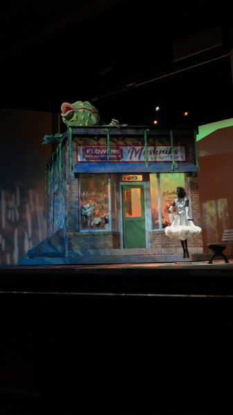 Work as the Technical Director drafting and facilitating the build, leading crews, and communicating with the designer and other departments for a production of 'Little Shop of Horrors'. Built and drafted an automated tracking, rotating shop unit for a theater space with a house of 750 seats for 'Little Shop of Horrors'.