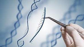 Gene therapy.jfif