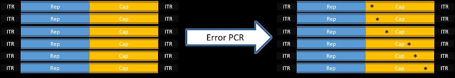 Error PCR.png