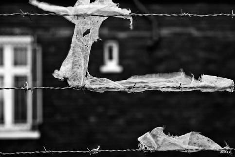 Prisonnier(s) - Tirage n°1 / 30