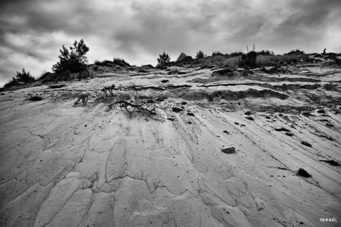 Dune - Tirage n°1 / 30