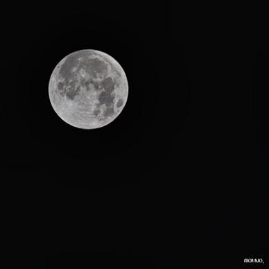 Moon - Tirage n°1 / 30