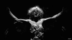 Transfiguration #4