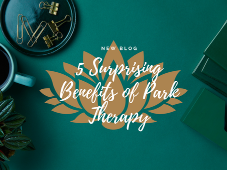 5 Surprising Benefits of Walking Therapy from an STL Therapist