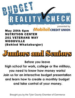 Budget Reality Check Mobiloil.png
