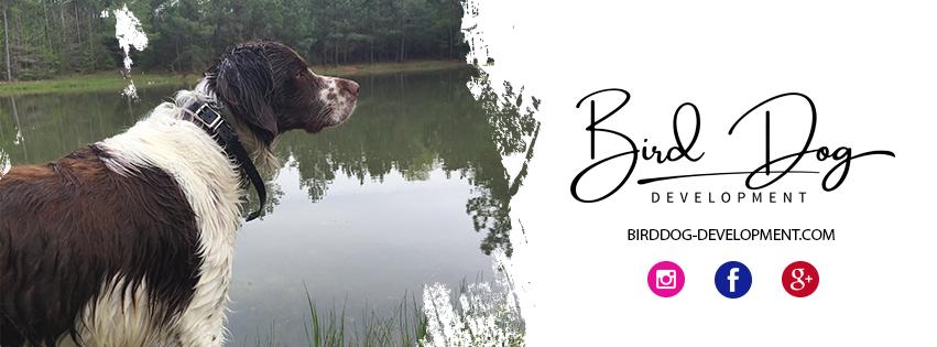 Bird Dog Development LLC.png