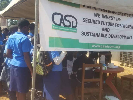 Cameroon Agenda for Sustainable Development (CASD): Accountable Investment for Lasting Impact