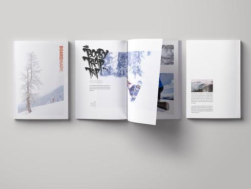 Boardinary Mag.jpg