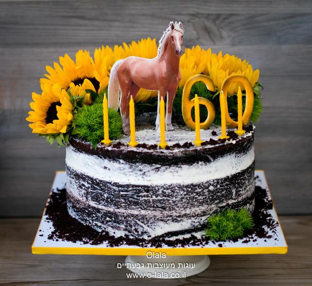 עוגה כפרית עם סוס וחמניות טריות