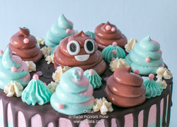 עוגת קקי