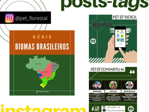 POSTS - TAGS: Instagram