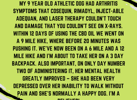 It's always a great joy to hear #HealthierPetStories like these from our clients.