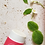 Thumbnail: Purified Body - Refreshing Deodorant