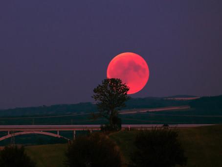 Lunar Self-Care