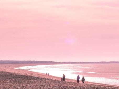 Sun, Screens and Summer Dreams