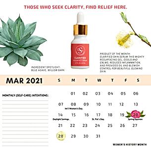 Self-Care Calendar (1).png