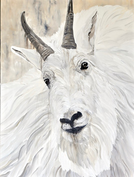 """Hamilton"" - Mountain Goat"