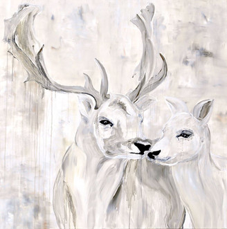 Fallow Deer - Pacific Northwest Series