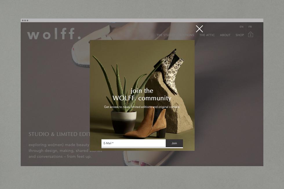 anneschubert_wolffpoint_webdesign7.jpg