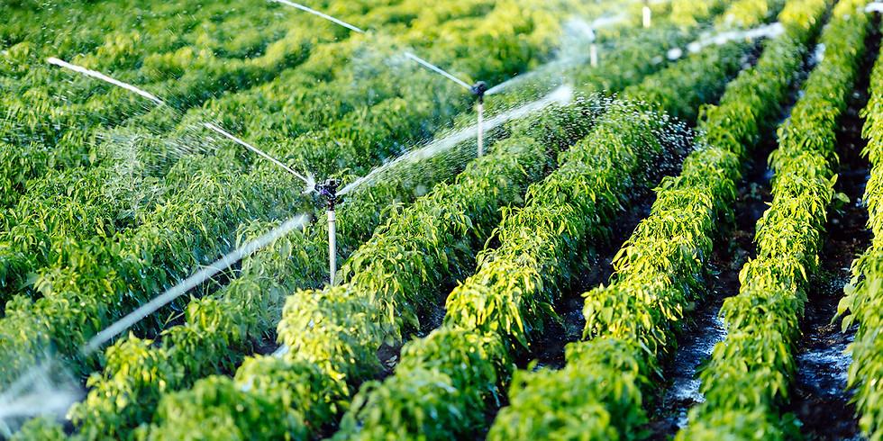 כנס חירום של משקי הדרום בנושא : מחירי המים לחקלאות