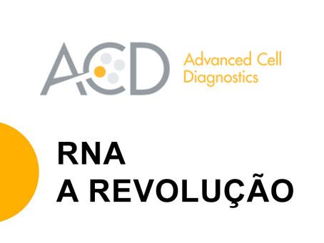 Acelere sua pesquisa utilizando o RNA como biomarcador