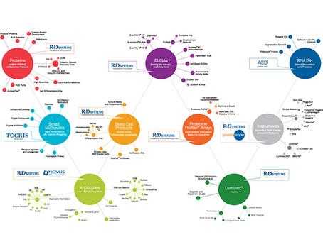 O grupo Bio-Techne na Imunoterapia do Câncer