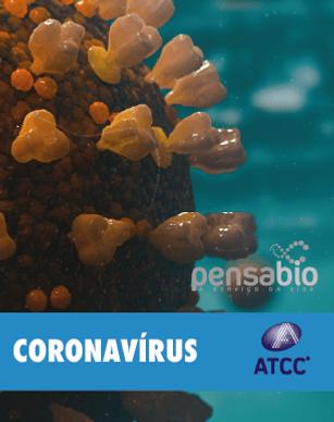 CORONAVIRUS_ATCC-8.png