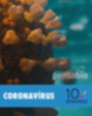 CORONAVIRUS_10X_CAIXA-8.png