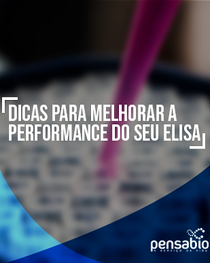 Dicas-Elisa---Container.png