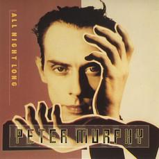 All Night Long  - Peter Murphy