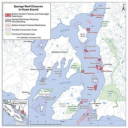 Glass Sponge Reef Closures for Spot Prawns in Howe Sound, British Columbia