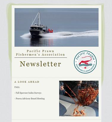 Newsletter Image.png