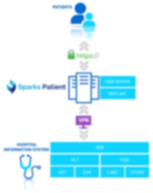 Patient-diagram.png