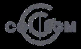 cgi-ecm-logo.png
