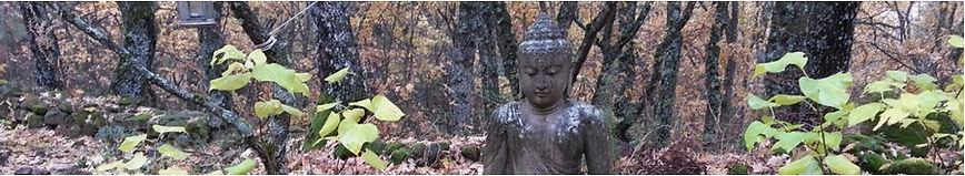 Buddha. HISHIRYO pensar sin pensar