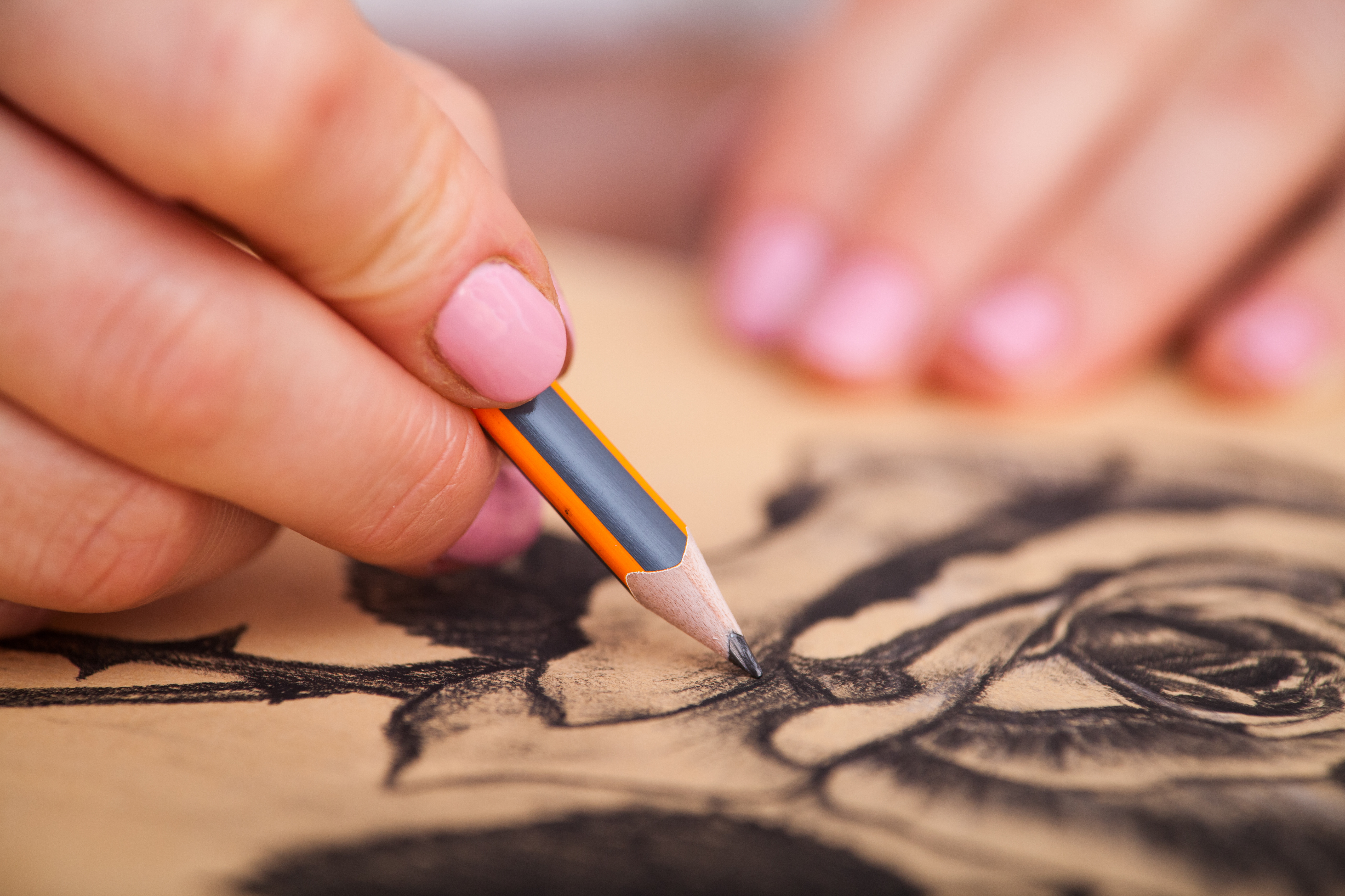 DRAWING, with color!  Teen/Adult TU 6:30