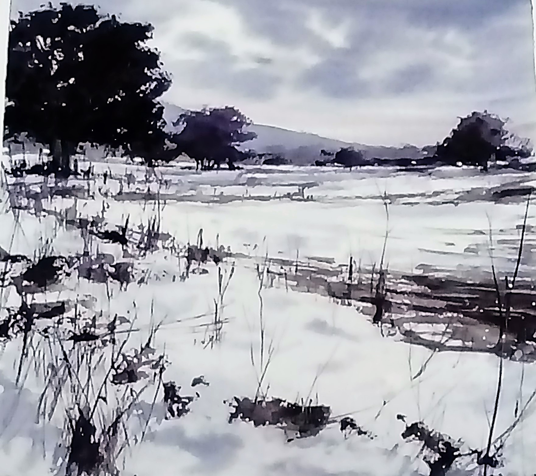 9-Pablo Ruben Lopez (Snow Scape)