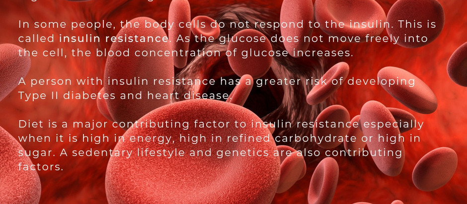 Unsure of how to manage Insulin Resistance?