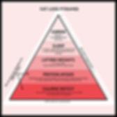 Fat loss pyramid.jpg