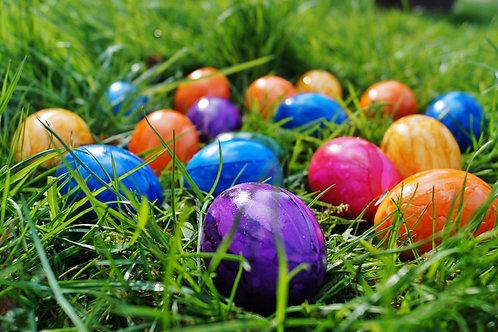 Egg My Yard 2021