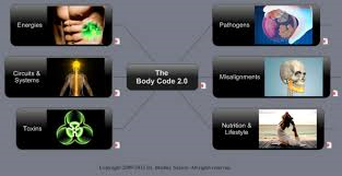 Body Code Front Screen.png