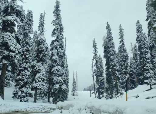 Gulmarg in winter 2020 | How to plan a trip to Gulmarg in winter