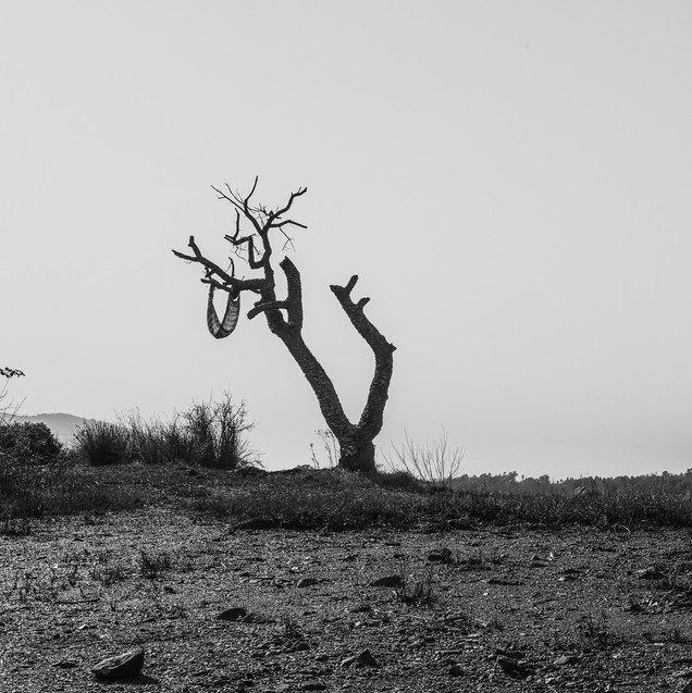 Untitled (Derelict), 2018
