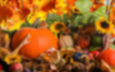 Fall-Harvest-Awesome-Wallpapers.jpg