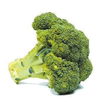 Chou brocolis
