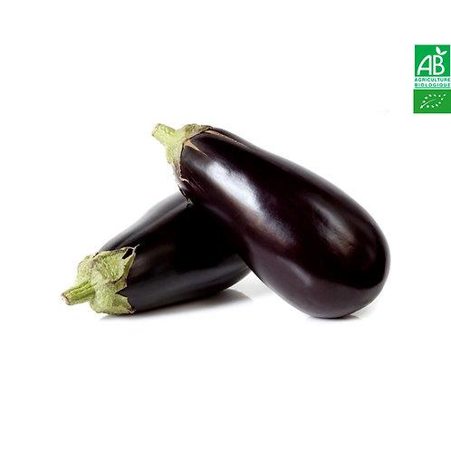 Aubergine noire bio